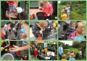 Upper pre school visit Quex Garden Centre for science